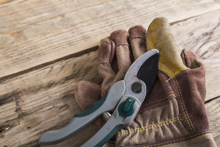secateurs: Gardening secateurs with gloves Stock Photo