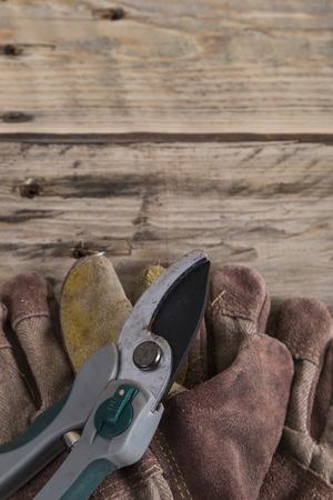 gardening gloves: Secateurs and gardening gloves