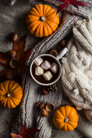 Mug of hot chocolate with marshmallows in autumn, surrounded by fall objects including leaves and pumpkins 免版税图像
