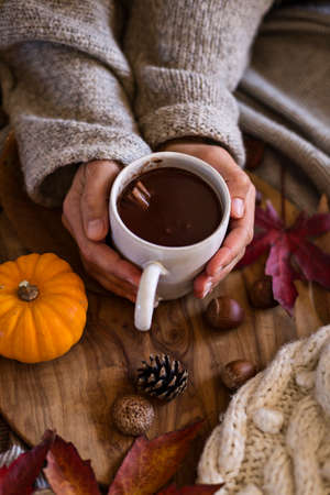 Woman wearing warm sweater holding mug of hot chocolate in the autumn months 免版税图像