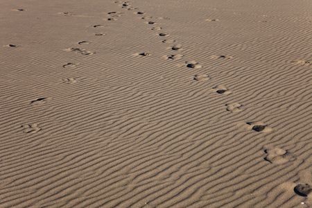 Horse tracks on a sand waves background Reklamní fotografie