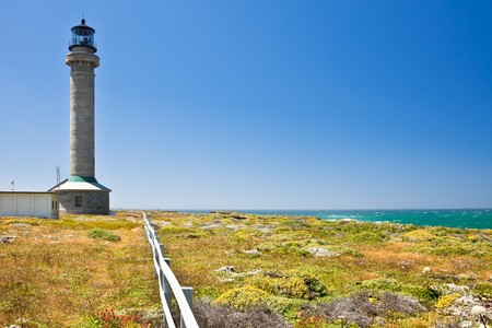 Point Arena Lighthouse. Erected in 1870, destroyed by the 1906 earthquake, and rebuilt the following year, it was the first lighthouse to be made of steel and concrete.  The Point Arena Lighthouse Tower is 115 ft. high. photo