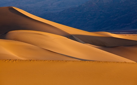 mojave desert: Mesquite Flat Sand Dunes at sunrise, Death Valley National Park, California.