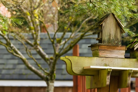 Rustic birdhouse in the garden. photo