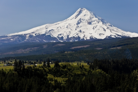 Scenic view of snow capped Mount Hood with forest in a foreground. photo