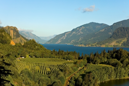 wineries: View over Columbia River,  Columbia River Gorge, Oregon