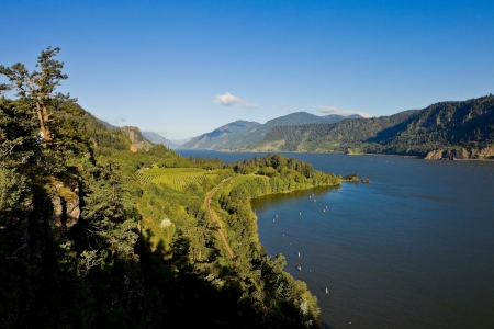source: View over Columbia River,  Columbia River Gorge, Oregon
