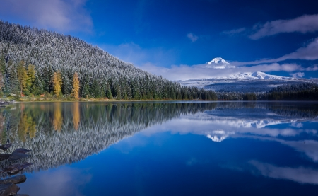 Scenic view of snow capped mountain and its reflection in lake in foreground  Mount Hood and Trillium Lake after fresh snowfall