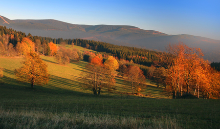 morava: Beautiful autumn landscape with trees lit by the sun Stock Photo