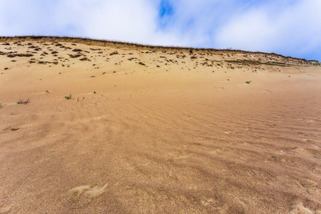 Grey dunes in the Curonian Spit, Lithuania. Imagens