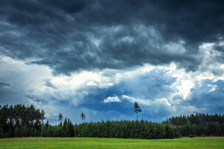 Image of dark Storm clouds over the forest