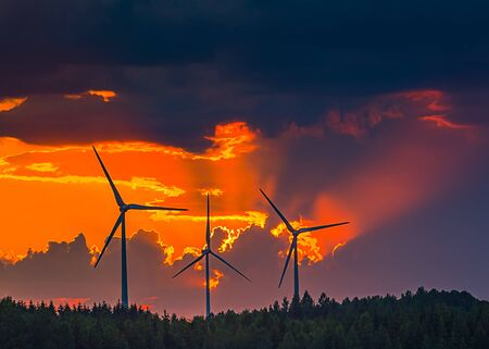 Four Wind turbines in the evening light