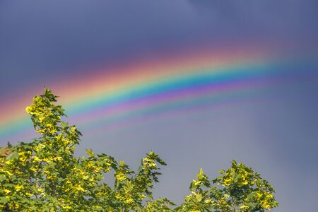 Beautiful flat rainbow in the sky close up