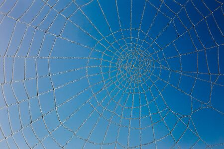 The Spider Web close up. Blue sky background