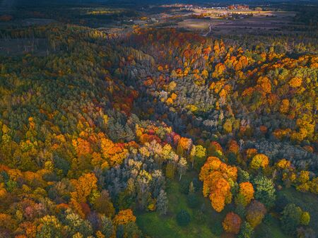 Aerial Drone view of colorful top of the forest at Autumn