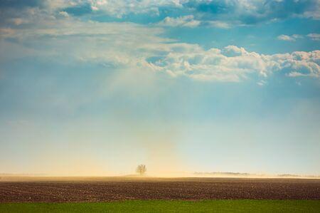 Dust storm in dry fields, dry weather infuenced by climate change Banco de Imagens