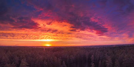 Red sunset above forest, panorama of dreamy landscape