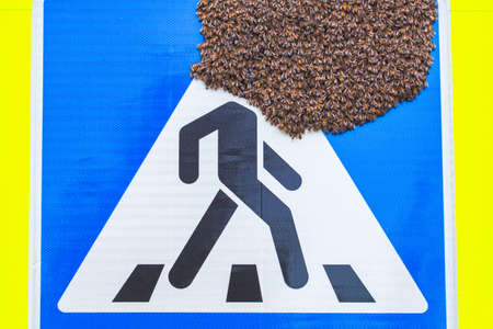 Sign with huge bees swarm on it
