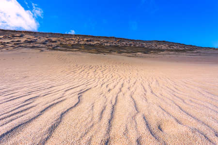 Sand textures at Grey Dunes, Dead Dunes at the Curonian Spit in Nida, Neringa, Lithuania Banco de Imagens - 152745395