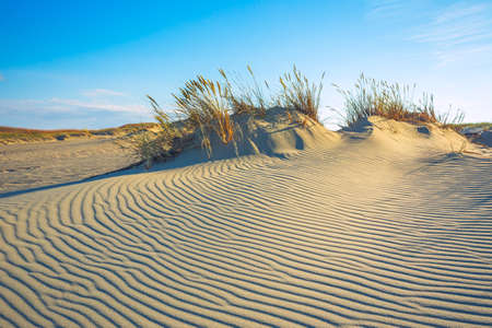 Sand textures at Grey Dunes, Dead Dunes at the Curonian Spit in Nida, Neringa, Lithuania Banco de Imagens - 152849212