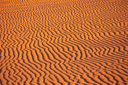Desert and ripples in warm evening sunlight Banco de Imagens - 152849230