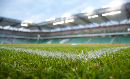grass field of stadium