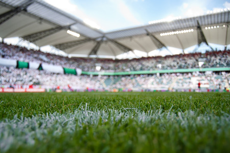 grassfield: grass field of stadium