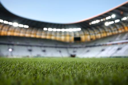 lightbeam: grass field of stadium