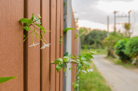 Fence and nature background