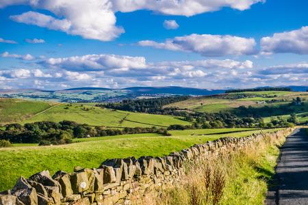 夏、ランカシャー、ボウランドの森、イギリスのイギリスの田舎道