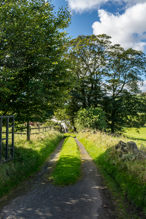 English farm road on summer, Lancashire, Forest Of Bowland, England UK Stock Photo