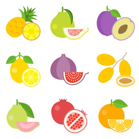 dates fruit: Fruit icons set 1, pineapple, pomelo, date, flat design Illustration