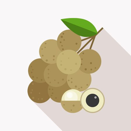 lon: longan icon with long shadow, flat design
