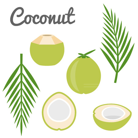 fruit drink: Vector coconut icon