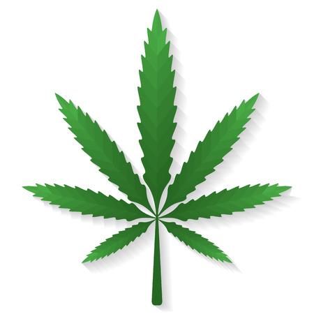 no gradient: Vector cannabis in flat style no gradient