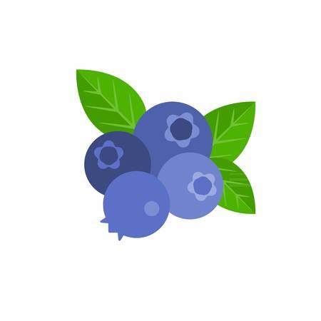 bunch: Vector bunch of blueberry, flat design