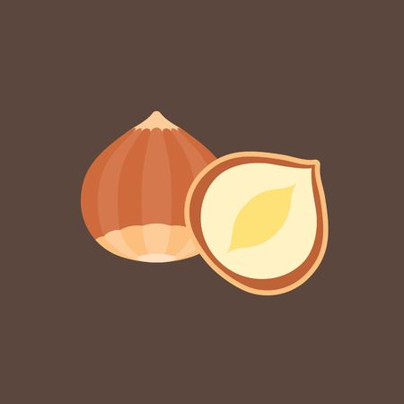 filberts: Vector hazelnut, flat design Illustration
