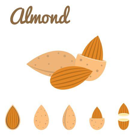 dry flowers: almond icon flat design
