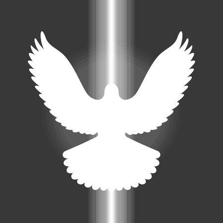 pentecost: vector pigeon,sign of holy spirit,flat design no gradient Illustration