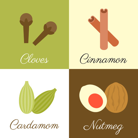 Icon of herbs and spices , cloves, cinnamon, cardamom and nutmeg, flat design