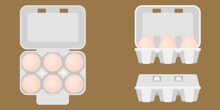 egg box in aerial view and front view, close and open box, flat design vector