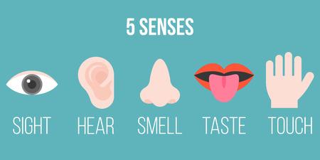 Icône de cinq sens, design plat avec le nom, la vue, l'ouïe, l'odeur, le goût, le toucher. illustration vectorielle. Vecteurs