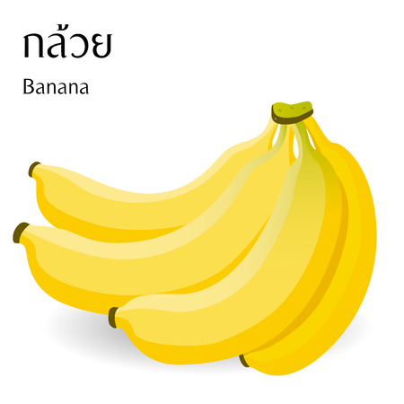 Thai food vector on white background with Thai alphabet meaning banana.