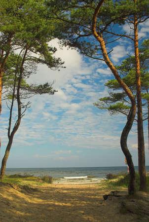 beach in Poland Baltic Sea in summer photo