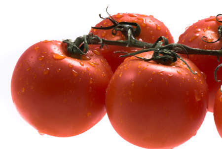 red tomatos on white background