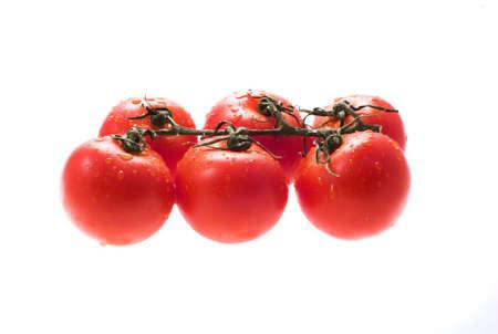 red tomatos on white background photo