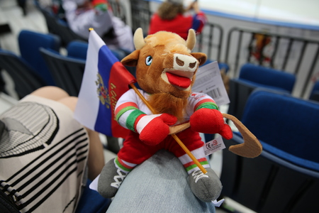 icehockey: Minsk, Belarus - may 15, 2014: the 2014 world Cup. The world hockey championship Russia - Kazakhstan in the Palace of sport in Minsk