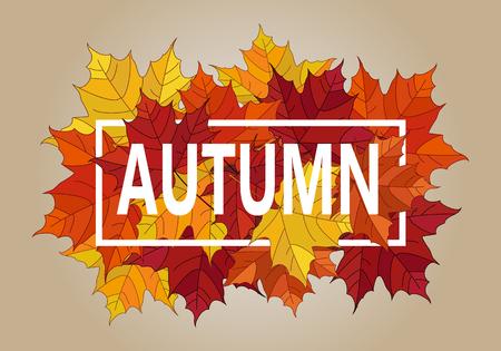 fall leaf: Autumn vector banner. Pile of leaves. Maple autumn leaves. Autumn typographic.Vector Fall leaf.