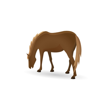 Grazing horse. Brown horse isolated image in a flat style. Vtctor illustration.