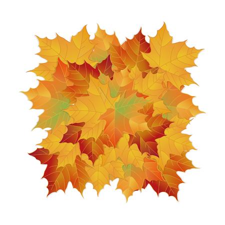 ベクトル秋落ち葉。要素花カラー庭を葉します。  イラスト・ベクター素材